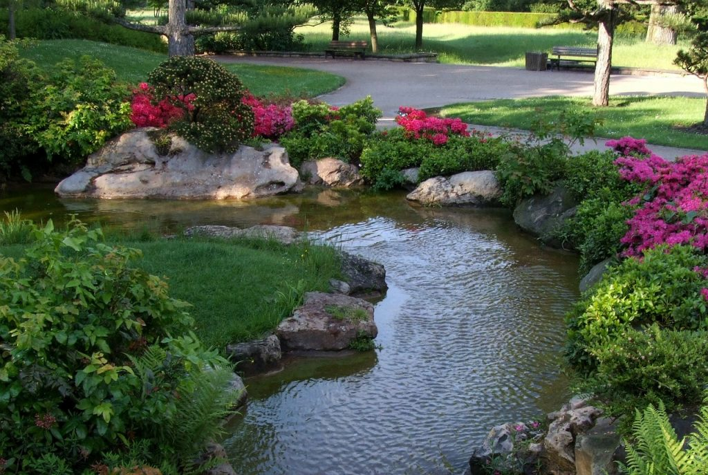 landscape, japanese garden, düsseldorf
